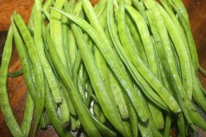Guar Cluster Bean Guar Resources